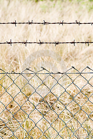 Free Wire Mesh Close Royalty Free Stock Photos - 16187928