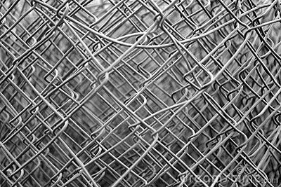 Wire mesh thicket