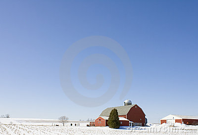 Wisconsin Dairy Farm In The Winter