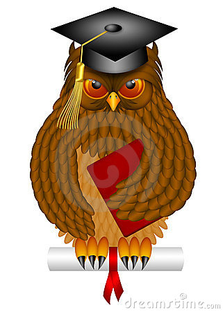 Wise Old Owl with Graduation Cap and Diploma