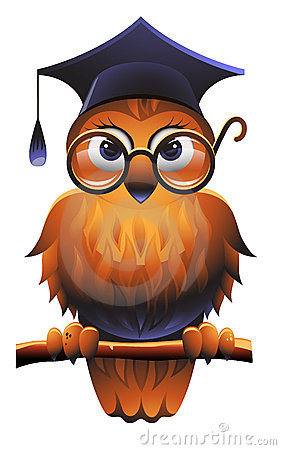 Free Wise Owl Stock Image - 19283961