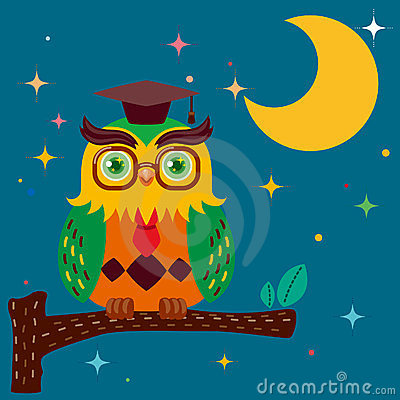 Wise owl against a star night sky