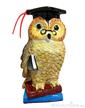 Wise owl with books