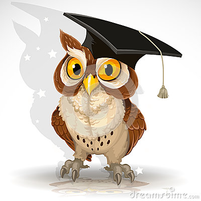 Wise owl in the cap of the graduate