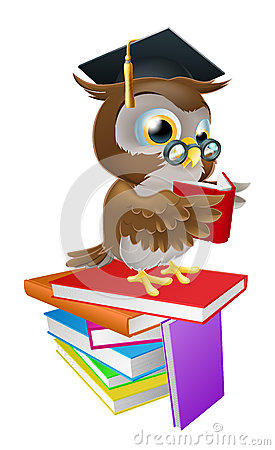 Free Wise Owl Reading Royalty Free Stock Photos - 29044268
