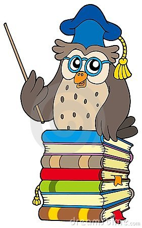 Wise owl teacher on books