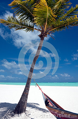 Free Wish You Were Here Stock Photo - 31858290
