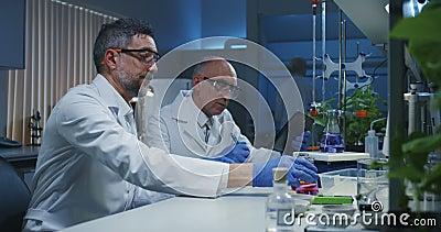 Wissenschaftler, die verschiedene Fl?ssigkeiten ?berpr?fen stock footage