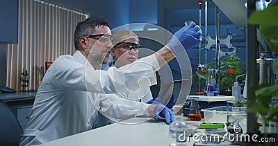 Wissenschaftler, die verschiedene Fl?ssigkeiten ?berpr?fen stock video