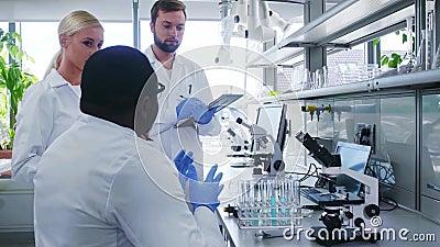 Wissenschaftler im Labor Ärzte, die medizinische Forschung betreiben Laborwerkzeuge: Mikroskop, Teströhren, Ausrüstung stock video footage