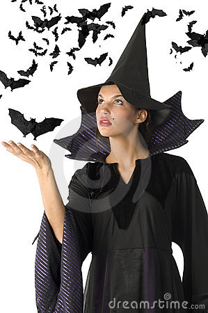Free Witch And Bat Royalty Free Stock Images - 6650159
