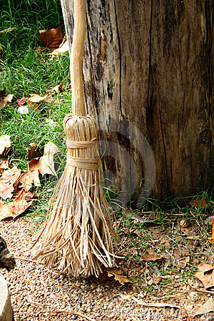 Witch s Broom