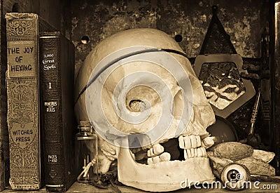 Witch Spooky Book Shelf - Halloween Still Life