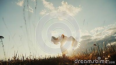 Witte engel en zon stock videobeelden
