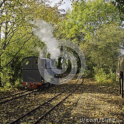 WLLR steam train