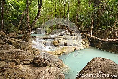 Wodospadów dżunglę.