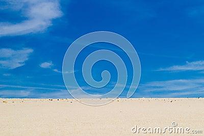 Woestijn 4