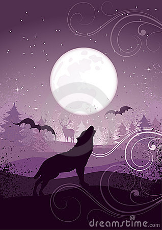 Free Wolf Howling At Full Moon Stock Images - 11464914