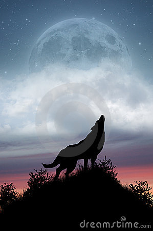 Free Wolf Howling At Full Moon Stock Photography - 15373672