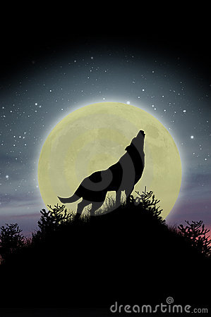 Free Wolf Howling At Moon Stock Photography - 15374202