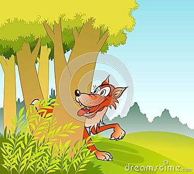 Wolf in jungle