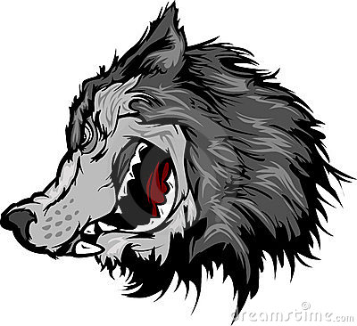 Wolf Mascot Head Cartoon