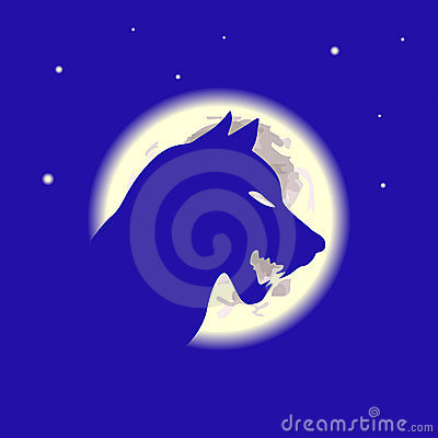 Wolf and moon in the night