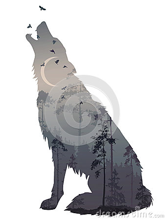 Wolf night Vector Illustration