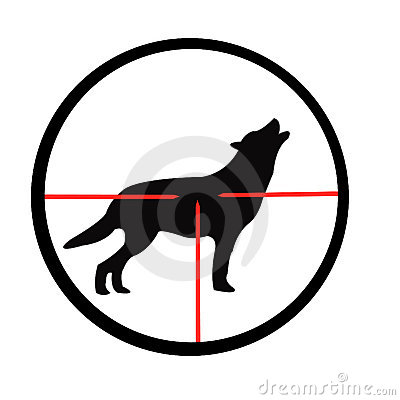 Wolf in optical sight