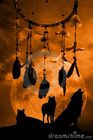 Free Wolves And Dream Catcher Royalty Free Stock Images - 11545369