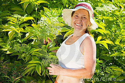 Woman against cornus  in  garden
