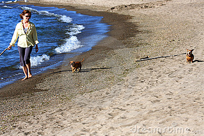 Woman on Beach with Dogs