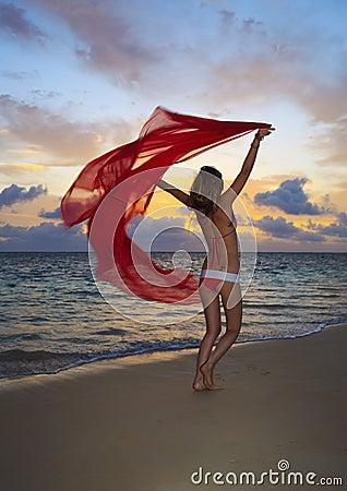 Woman in a bikini walking on the beach