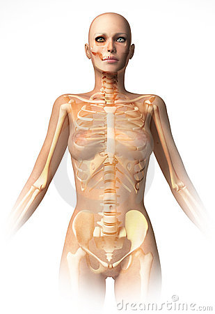 Woman body, with bone skeleton superimposed.