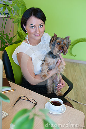 Woman business office yorkshire terrier