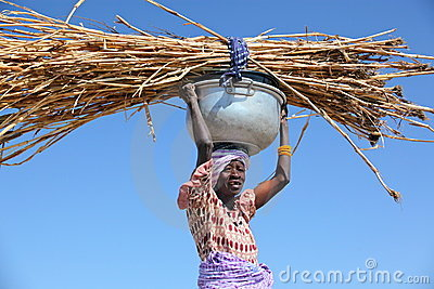 Woman carrying straw Editorial Image