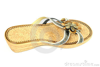 Woman casual shoe isolated on white background
