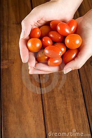 Woman chef hands holding tomatos