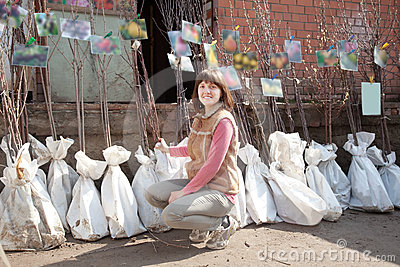 Woman chooses trees sprouts