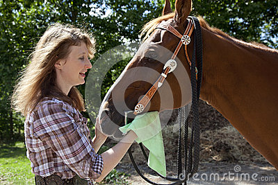 Woman cleaning horse muzzle