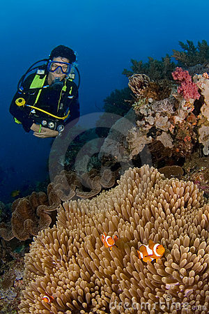 Woman diver behind big anemone and soft coral. Indonesia Sulawesi Lembehstreet