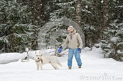 Woman with a dog on a walk in woods during a snowfall