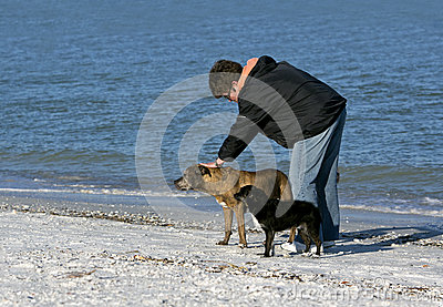Woman with dogs on the beach.