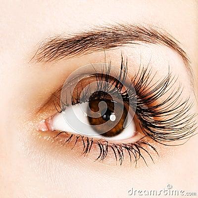 Free Woman Eye Stock Photography - 9875962