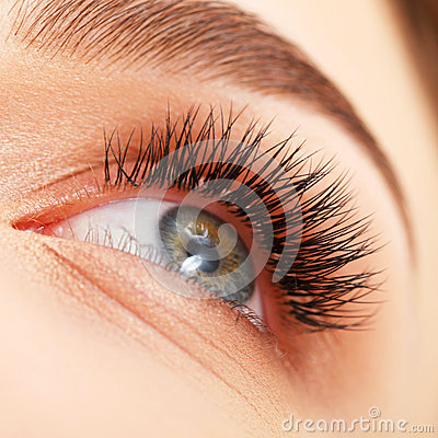 Free Woman Eye With Long Eyelashes. Eyelash Extension Stock Photos - 39172633
