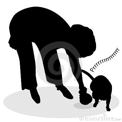 Woman Feeding Cat Silhouette