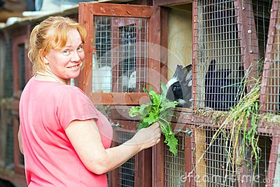 Woman feeding rabbits