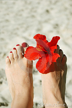 Woman feet with nail polish and flower