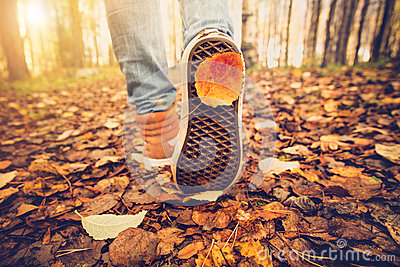 Woman Feet sneakers walking on fall leaves Outdoor Stock Photo