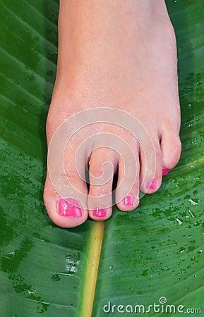 Woman foot in beauty treatment